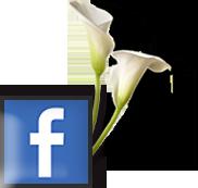 bestattung-bestatter-facebook